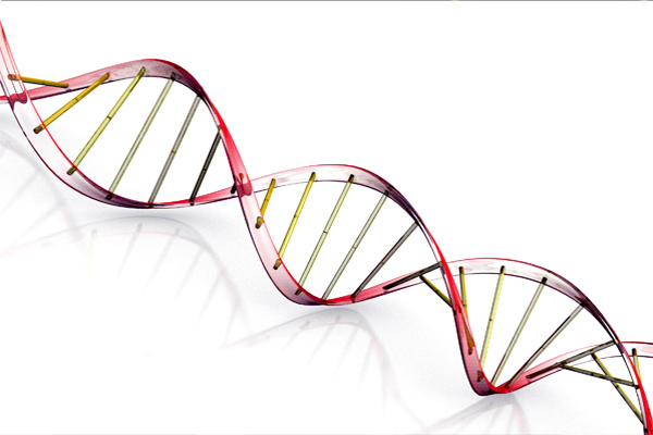 How to build Evangelism in Your Group's DNA